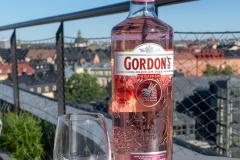 GordonsPink-1-6