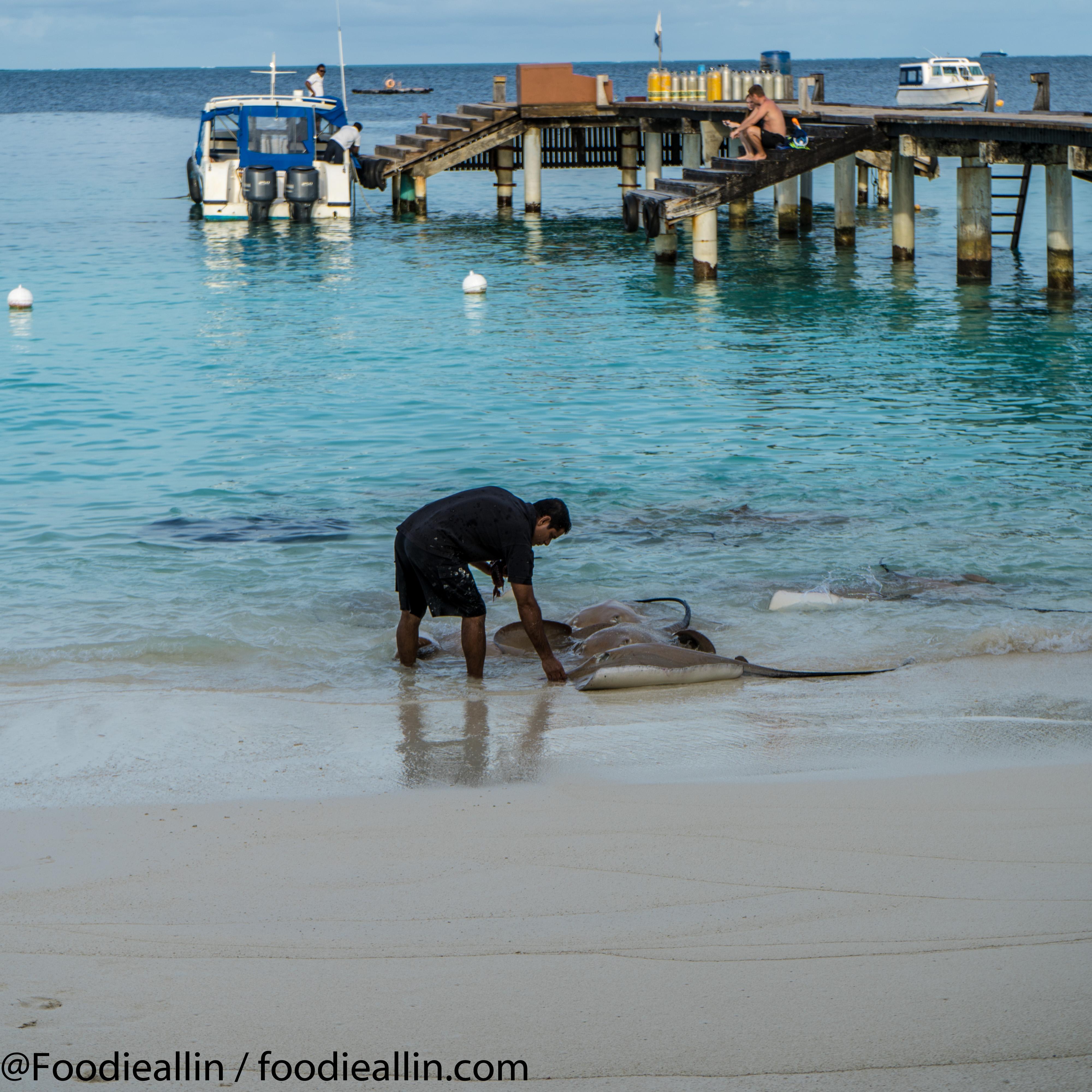 Maldiverna2018-0056