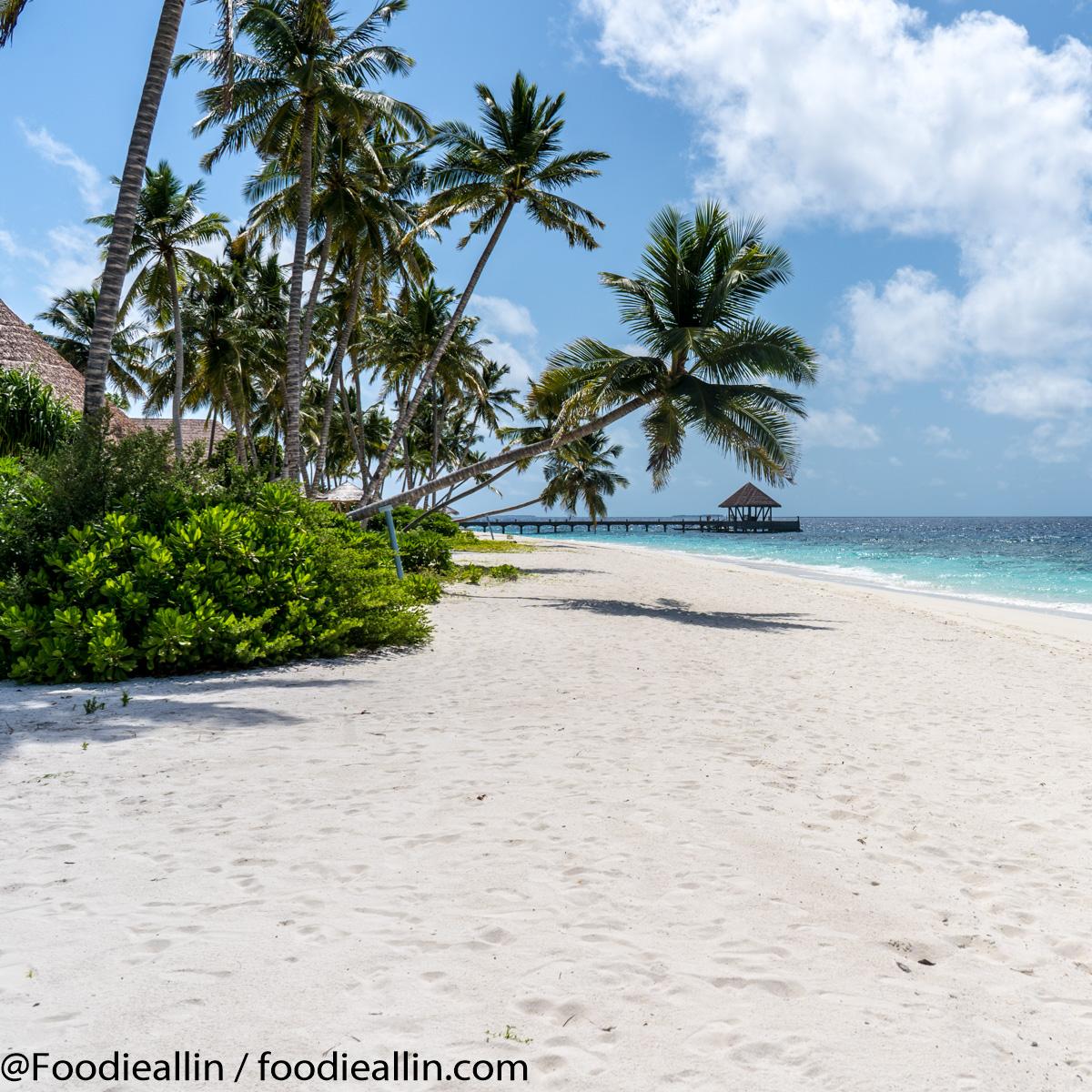 Maldiverna2018-0110