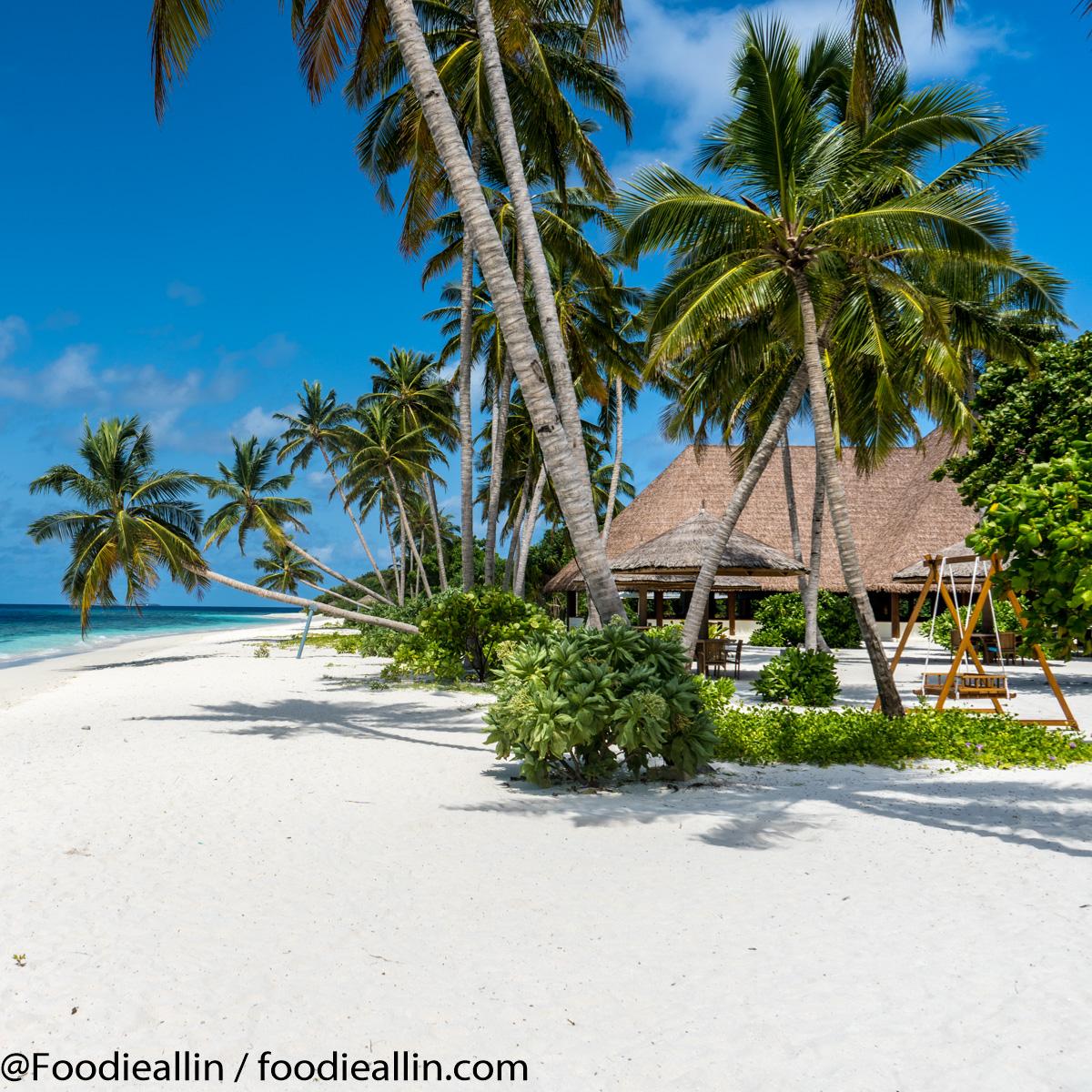 Maldiverna2018-0133
