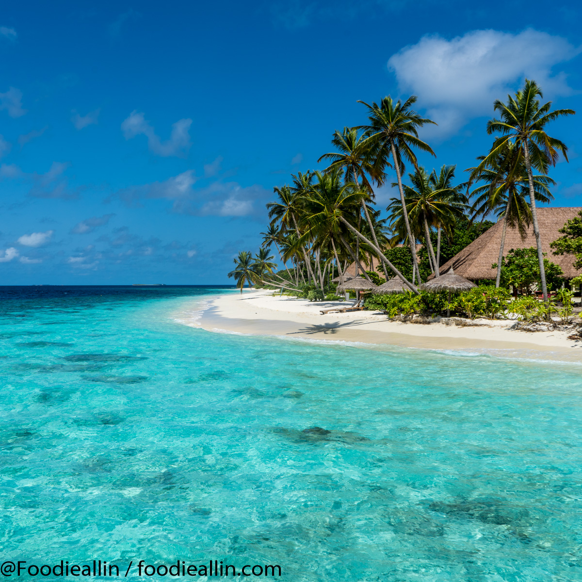 Maldiverna2018-0143