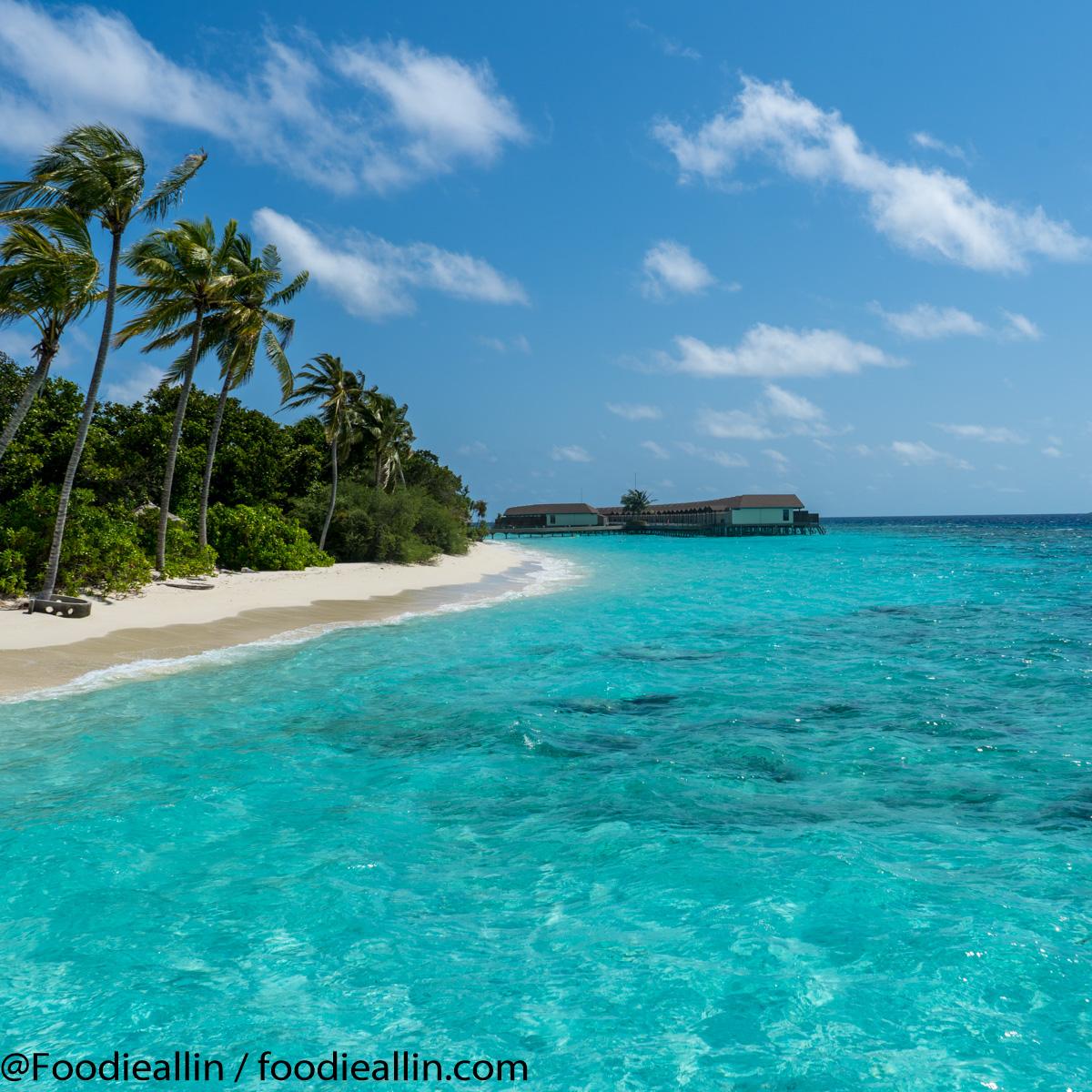 Maldiverna2018-0146