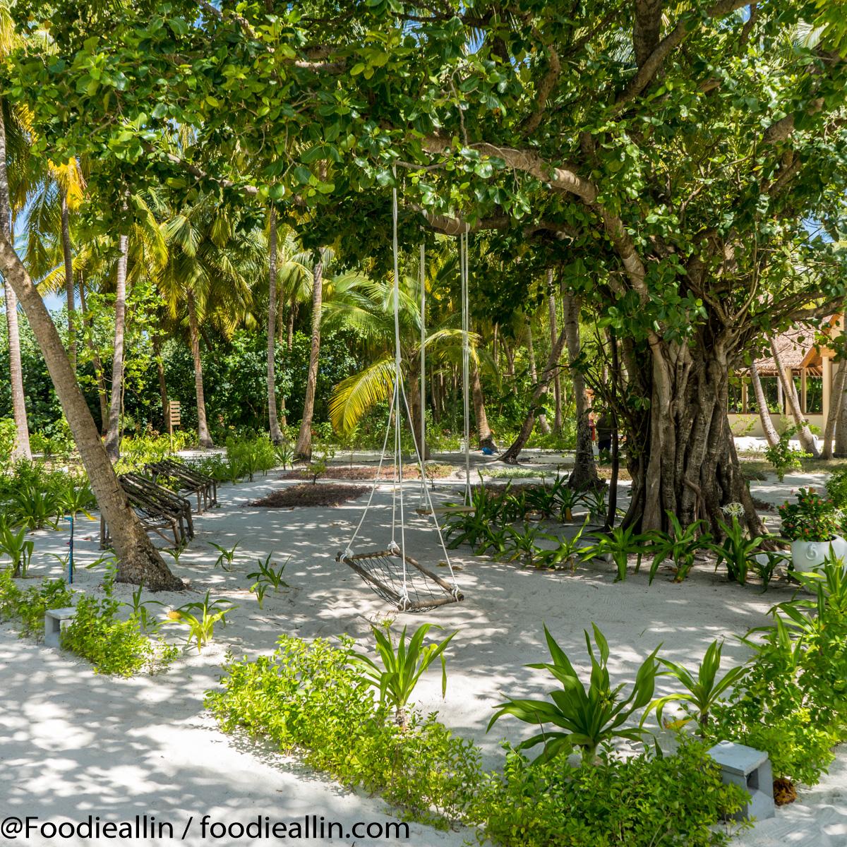 Maldiverna2018-0150