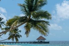 Maldiverna2018-0113